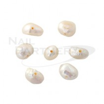 Capri 貝殼珍珠  (10粒)