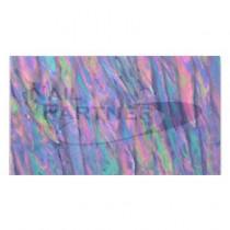 CLOU 貝殼貼 紫色