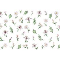 Amaily 彩繪貼紙 1-16 粉白小花