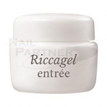 Riccagel entree 延甲專用凝膠 10g
