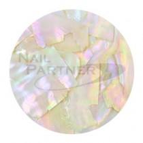NOVEL 水晶貝殼薄片